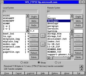 Collegamento FTP via Internet ad un computer di Microsoft negli Stati Uniti.