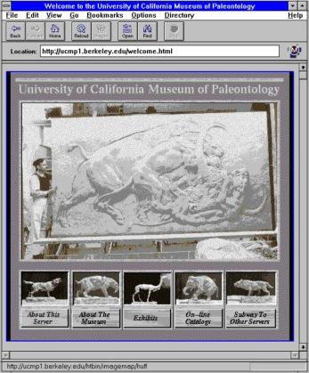 Senza muovervi dalla vostra scrivania potete visitare il museo virtuale di paleontologia dell'Università della California