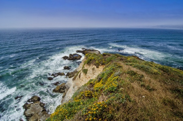 Tomales Point, Point Reyes