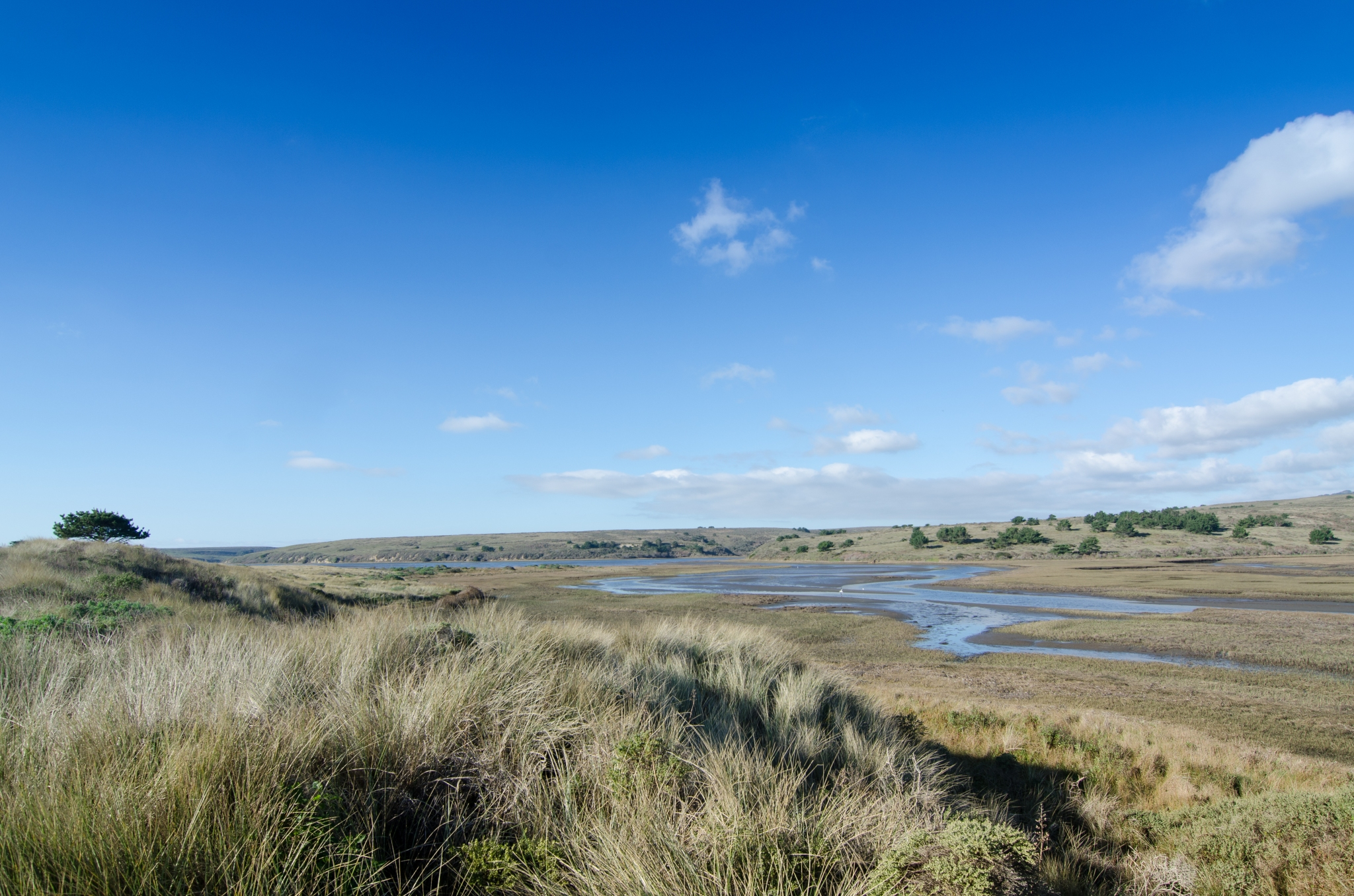 Glenbrook creek estuary