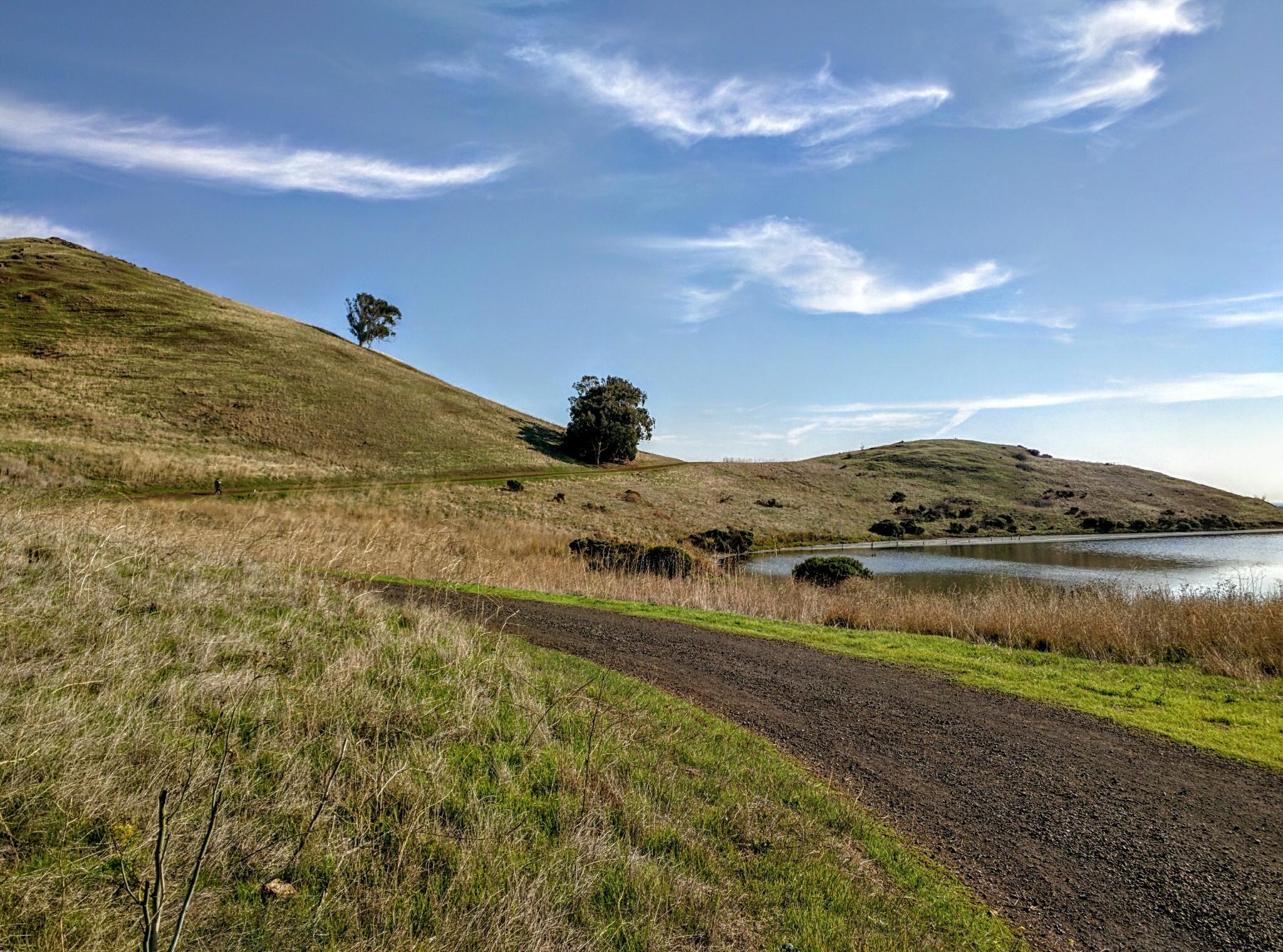 Lo splendido percorso attorno alle colline del Coyote Hills Regional Park