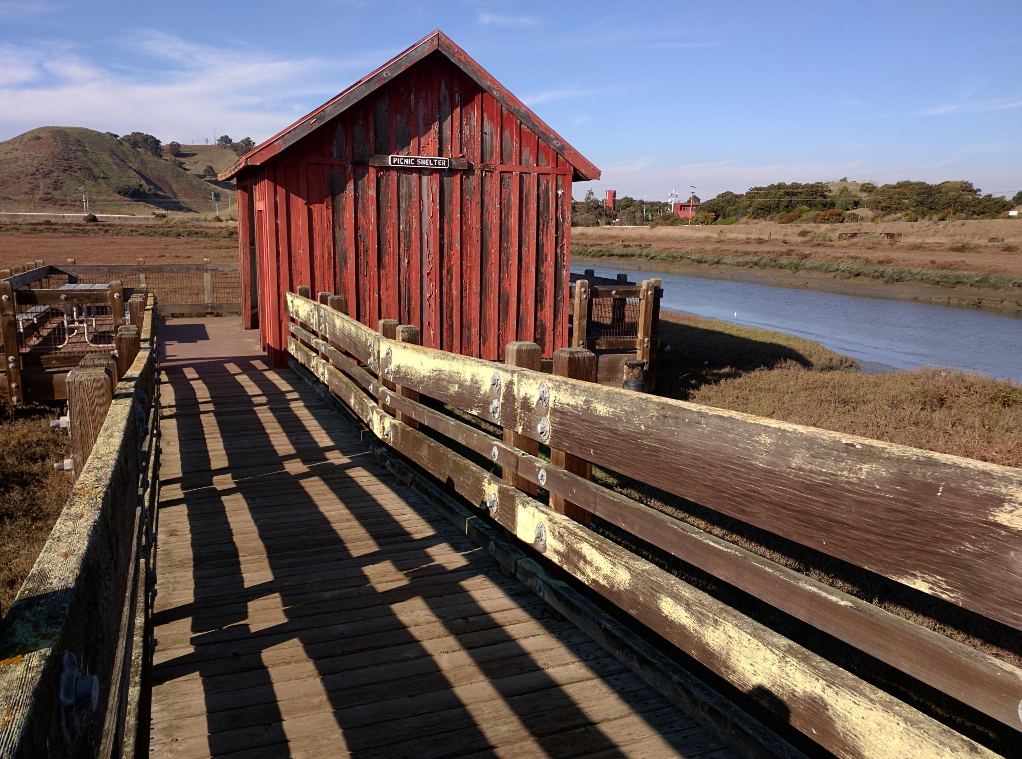 Un capanno per picnic o per birdwatching affacciato sulle paludi