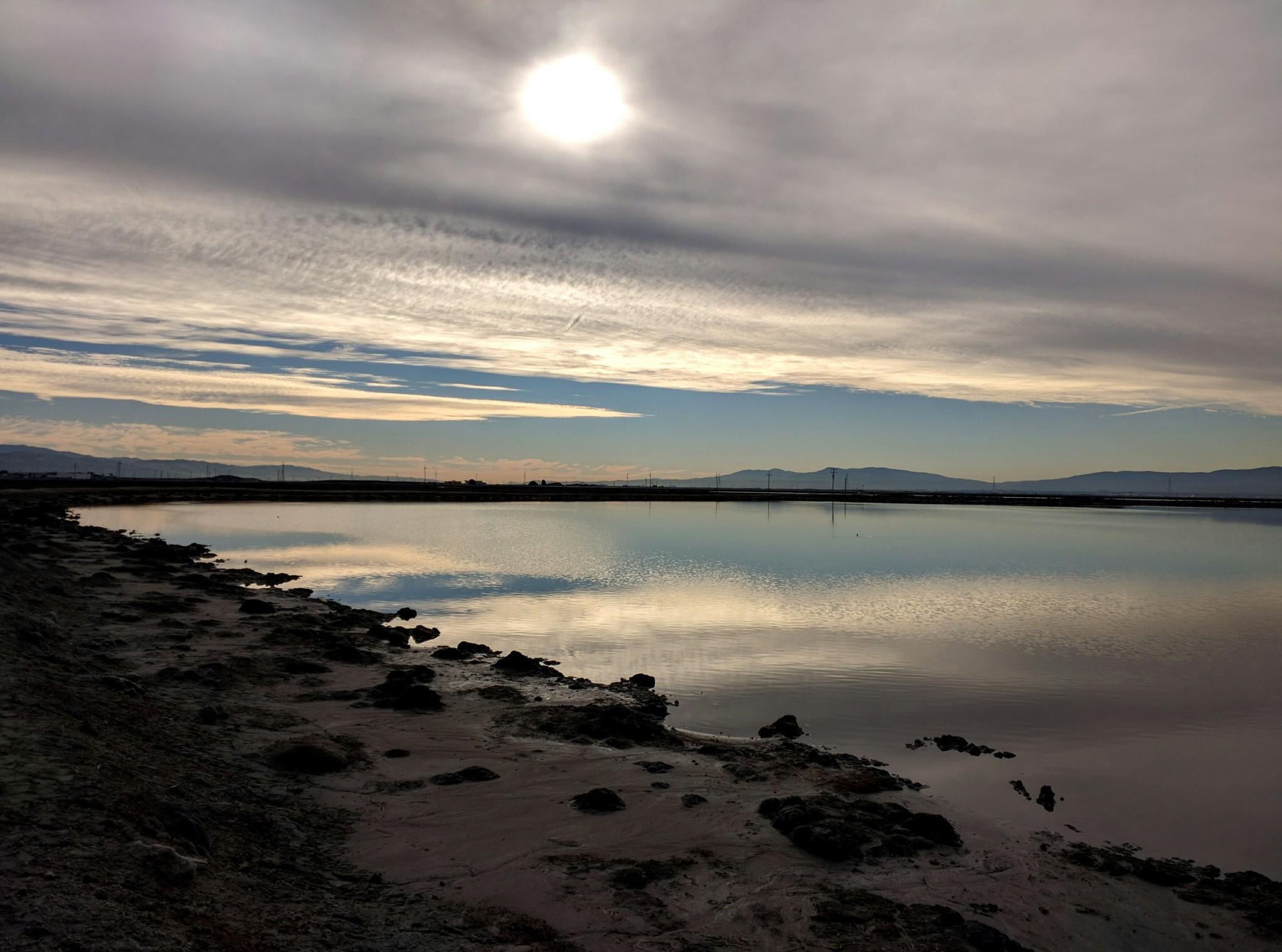 Luci e riflessi sulle paludi in una giornata invernale