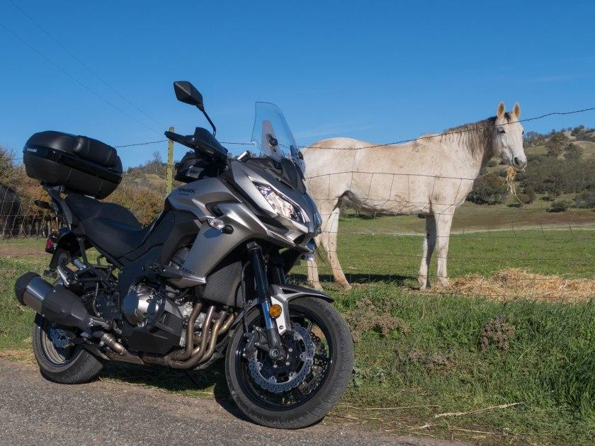 Kawasaki Versys 1000 LT: 101 + 1 horses in Capay Valley