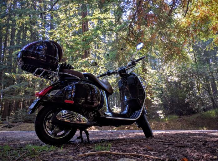 La Vespa come un boy scout ama i boschi, in particolare i redwoods