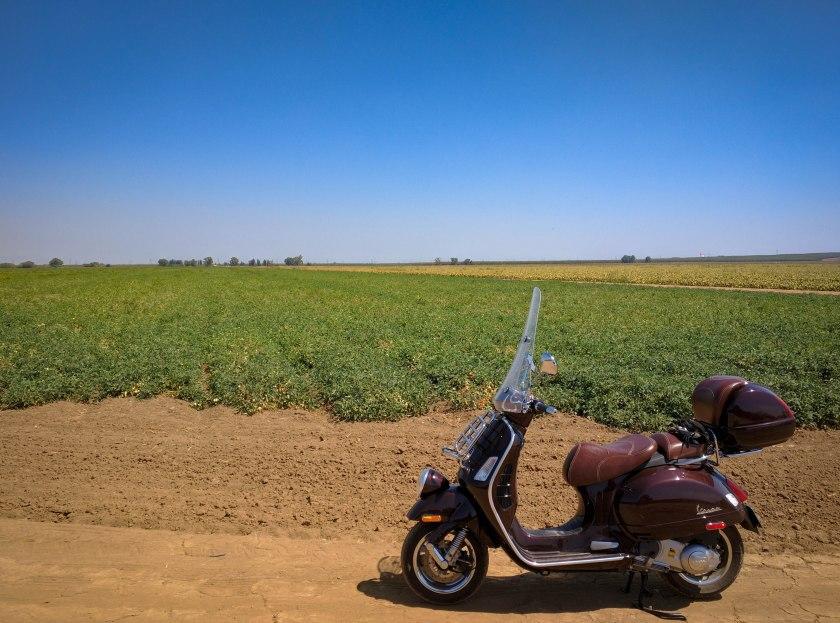 La Vespa nella Central Valley della California