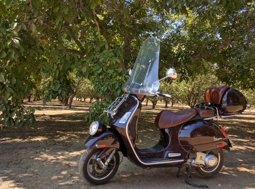 Vespa in un mandorleto californiano