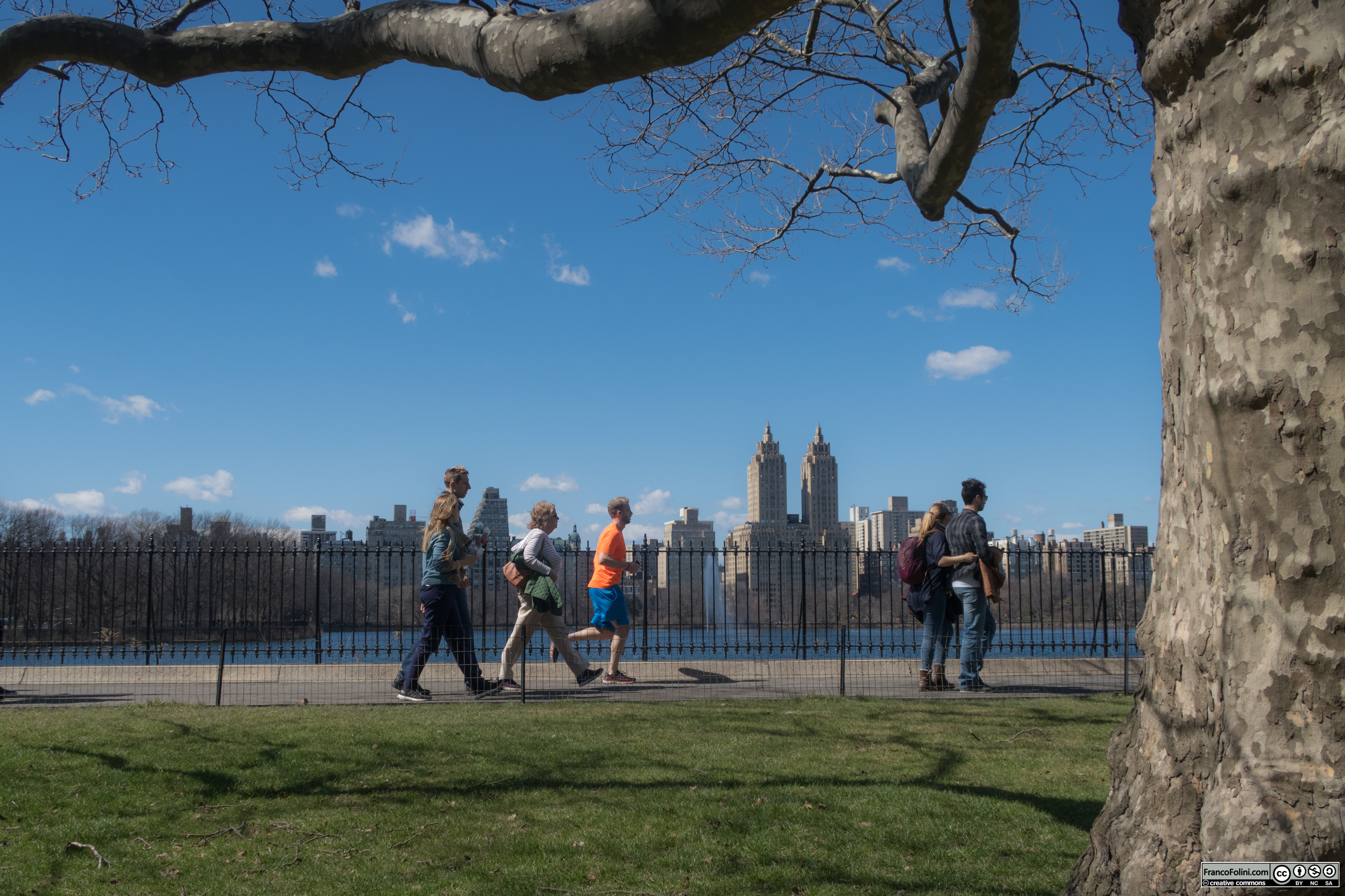 Tourists and locals in Central Park, NYC