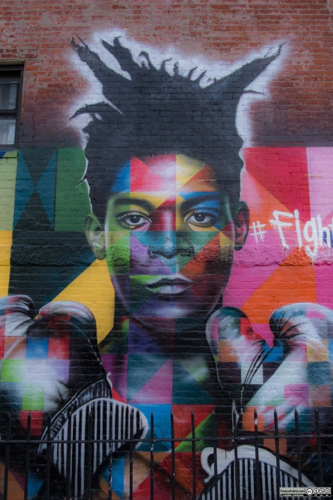 """Fight For Street Art"" mural by Eduardo Kobra, Brooklyn, New York, USA"