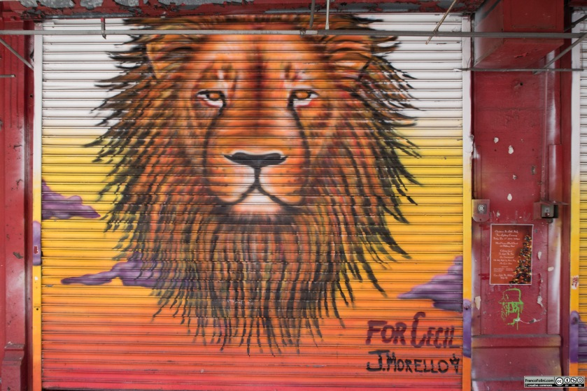 For Cecil by J. Morello on the wall of Mulberry Street Little Italy Manhattan New York
