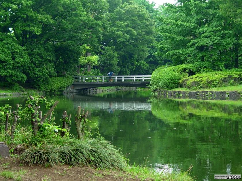 Tokyo: parco cittadino