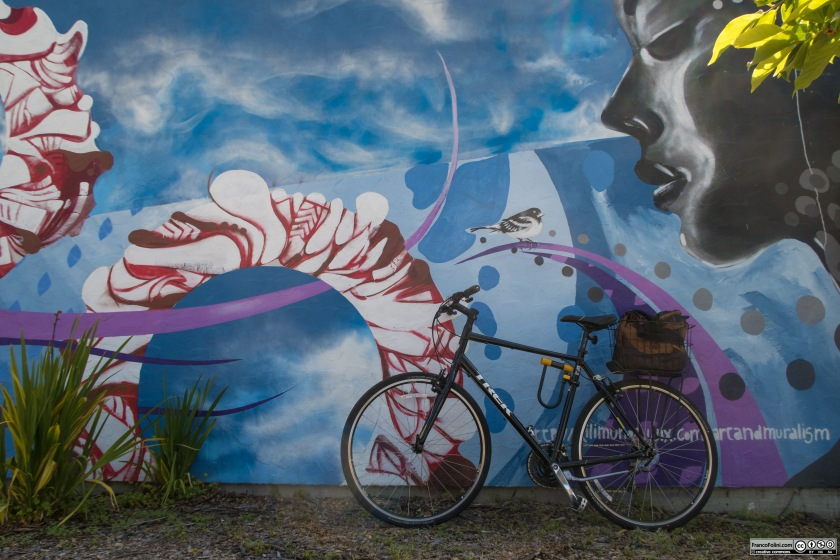 Bike and mural (mural by American-Chilean artist Cristian Muñoz)