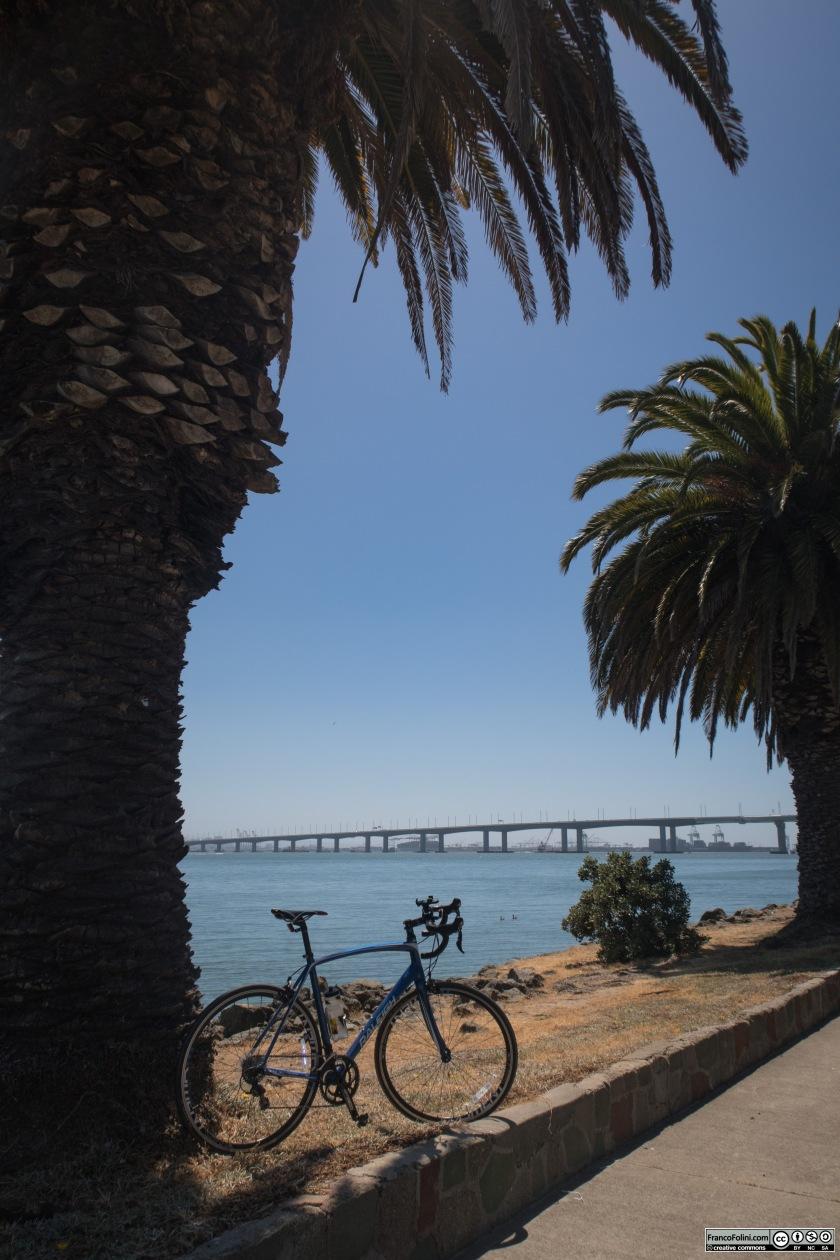 """Il tratto Oakland-Treasure Island del Bay Bridge visto dal viale """"palmato"""" sul lato est dell'isola"""