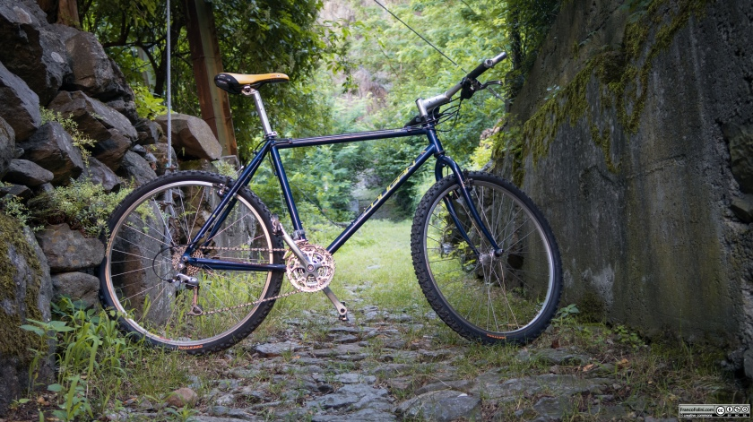 Sentiero Valtellina: la mia vecchia bicicletta sul sentiero che da Forcola sale verso la montagna