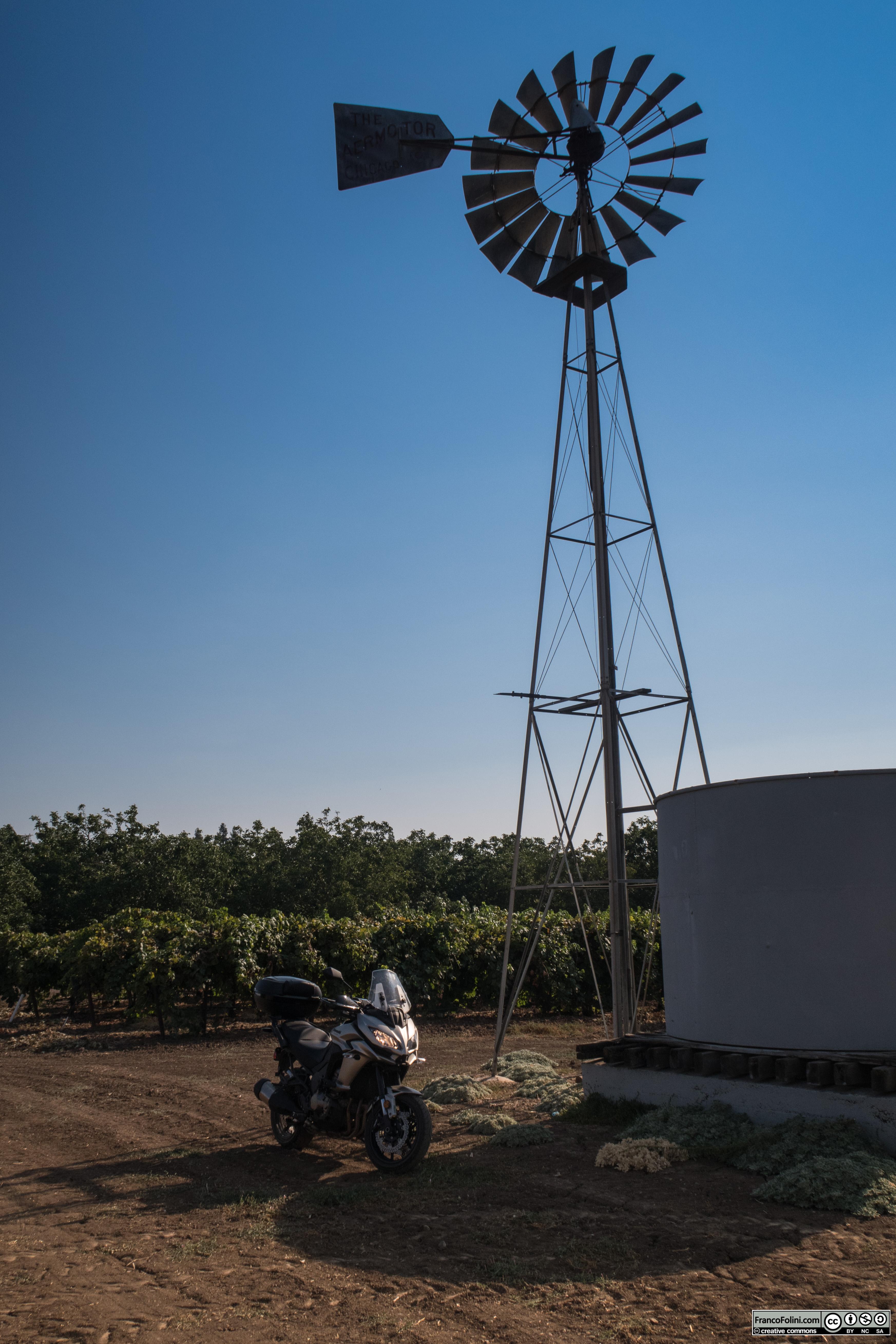 Van Allen Road, Farmington, CA: vigne con mulino a vento per l'irrigazione