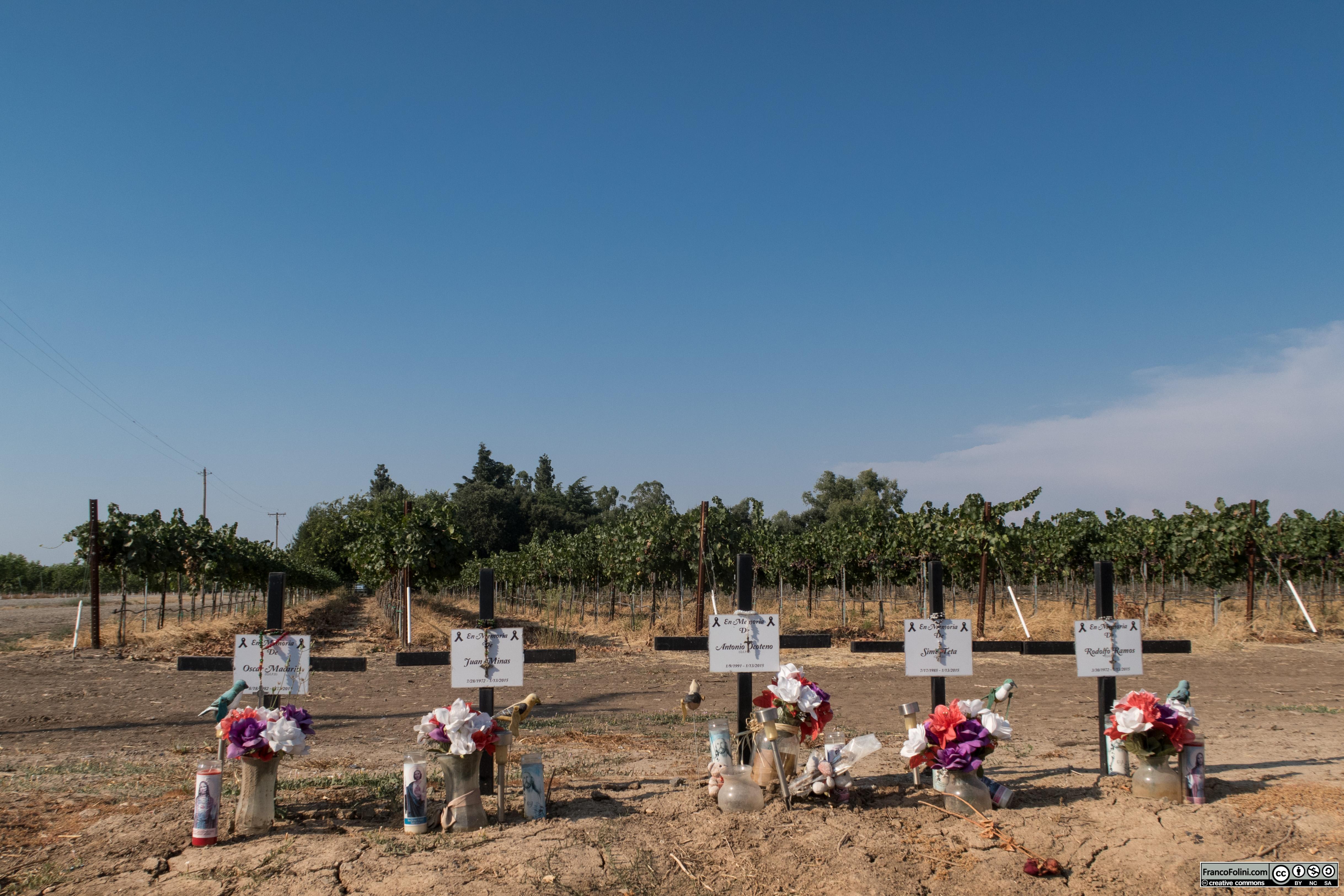 Farmington, CA: croci sul bordo della strada in memoria delle vittime di un grave incidente
