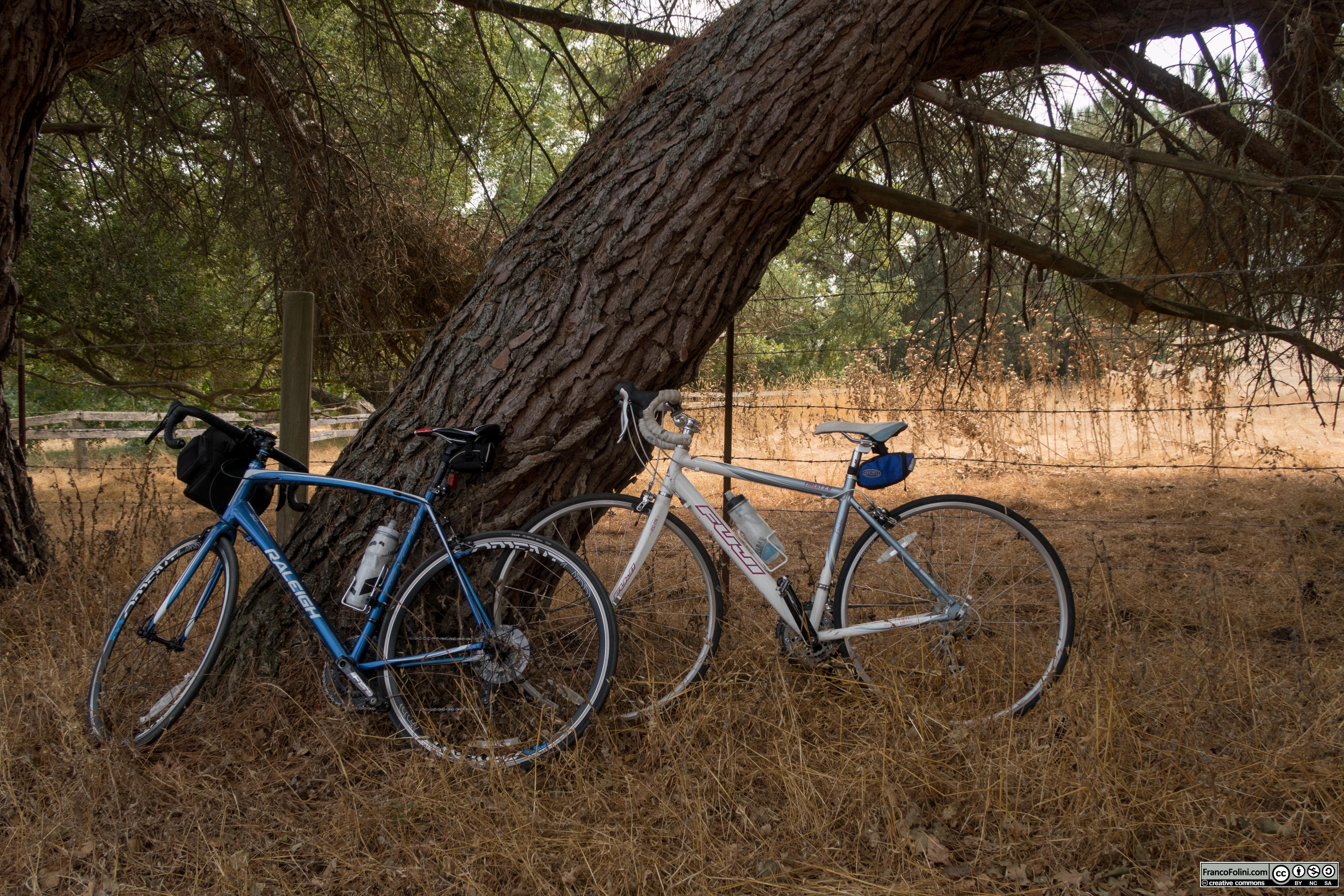 Le nostre biciclette si riposano all'ombra
