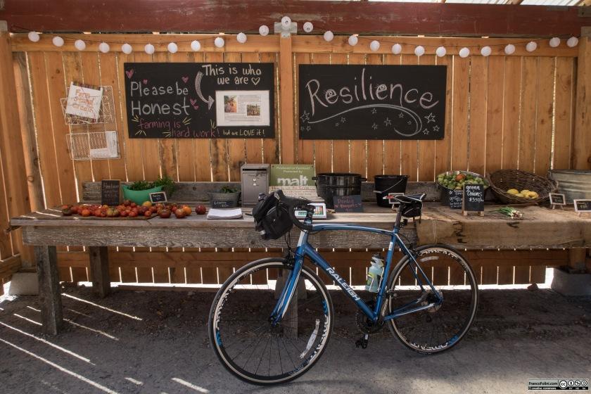 La mia bicicletta parcheggiata nel farm stand