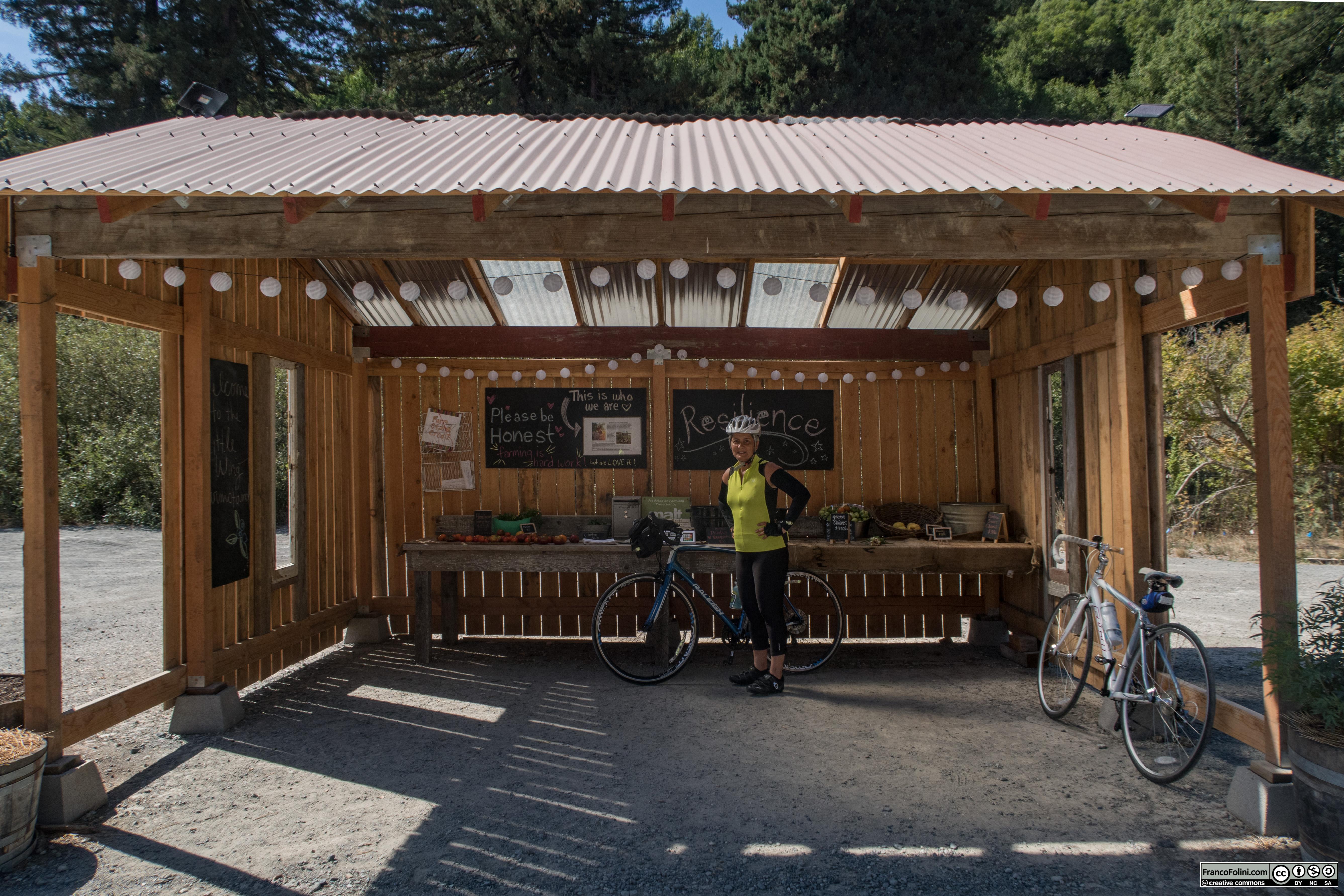 Little Wing Farm Stand, il banchetto self-service non-presidiato di una micro-fattoria