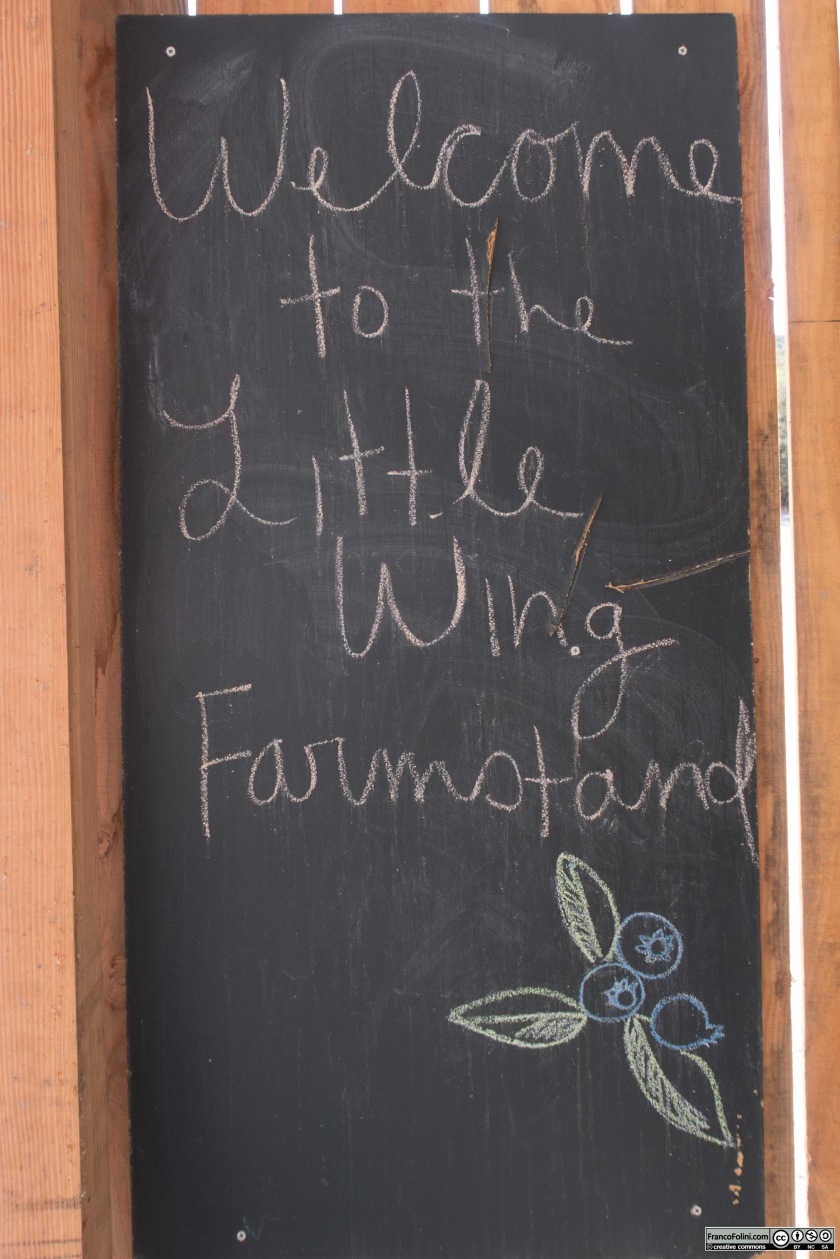 "Il cartello di benvenuto al ""Little Wing farm-stand"""