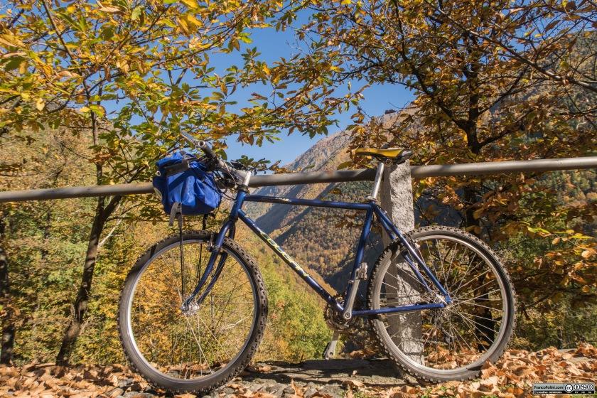 Tra i rami si puo' intravedere l'ingresso della Valfontana che in questo punto si affaccia sulla Valtellina