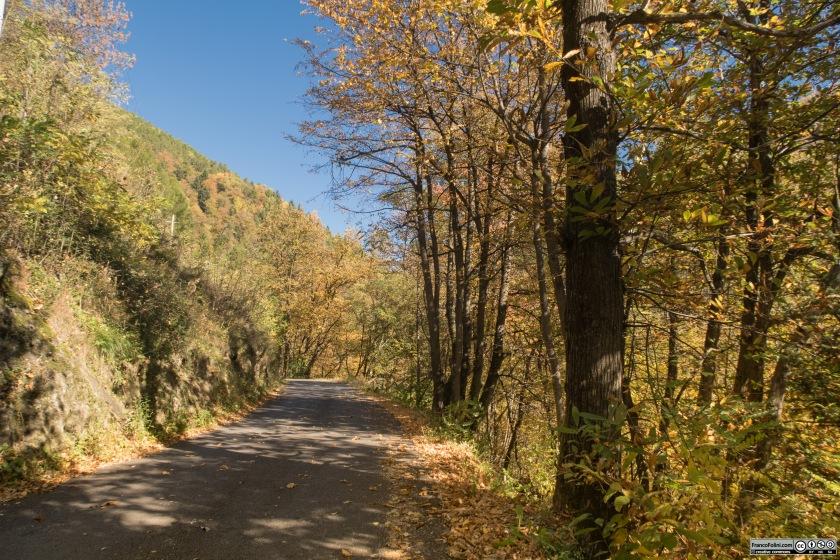 Il primo tratto della strada che entra nella Valfontana