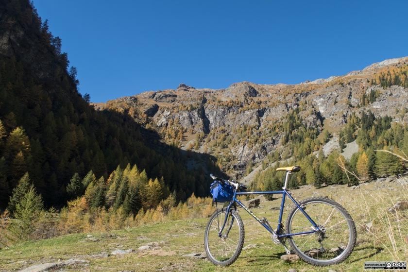 Alpe Campiascio