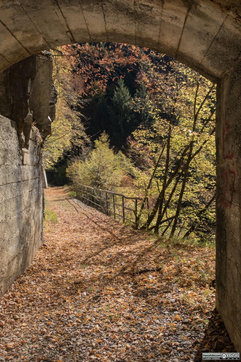 Come lascia intuire il manto di foglie secche, la decauville tra il Gaggio e Vedello è poco frequentata, in particolare nel periodo autunnale.