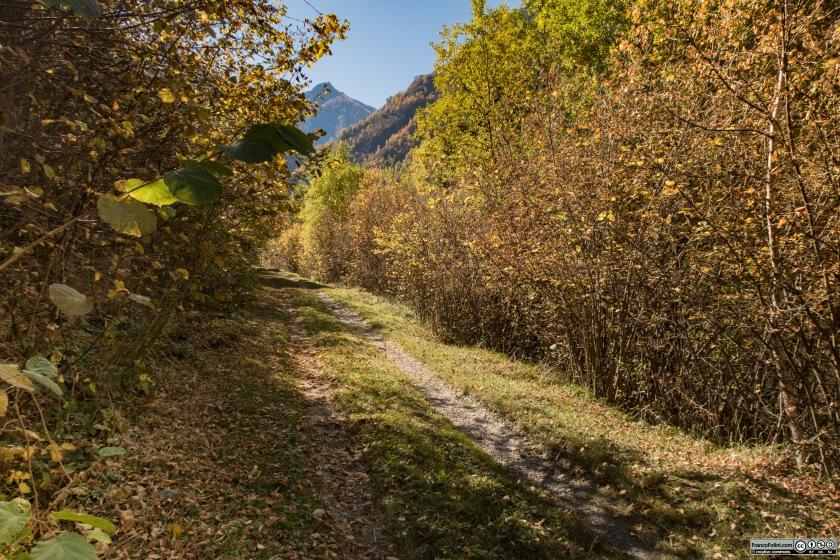 Avvicinandosi alla località Vedello le gallerie terminano e il percorso attraversa pianori e zone meno selvagge.