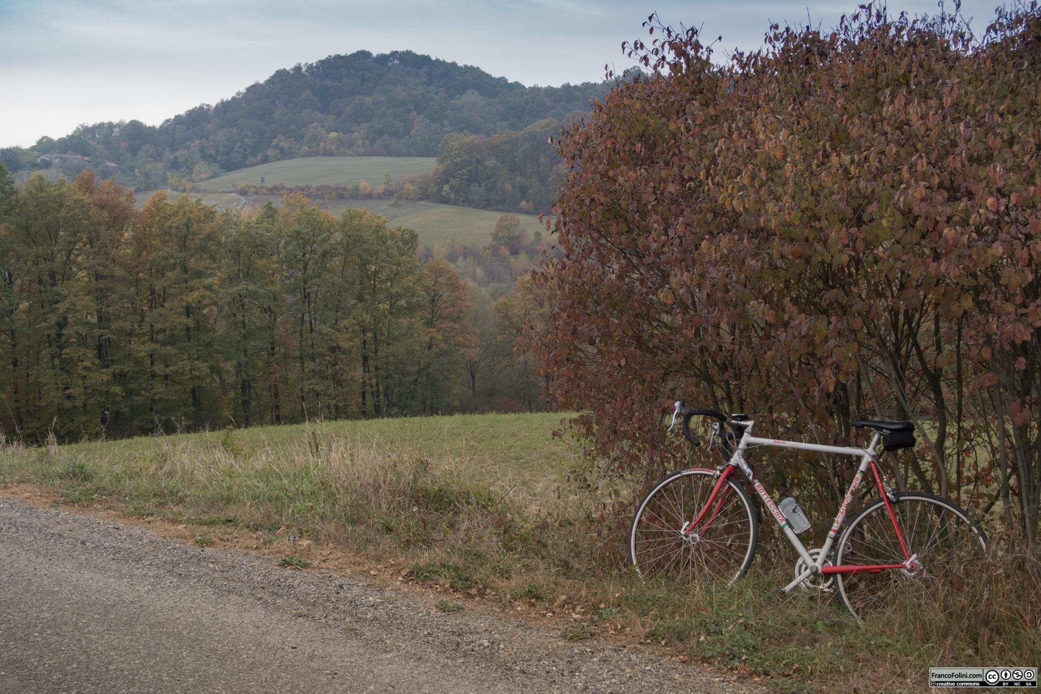 Le strade che si inerpicano sulle colline dell'Oltrepò offrono un susseguirsi di paesaggi sempre diversi.