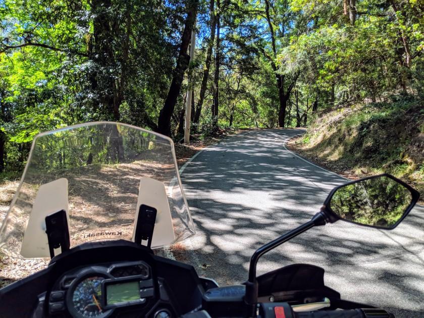 Di nuovo tra i boschi della Route 35 che qui si chiama un po' pomposamente Skyline boulvard.
