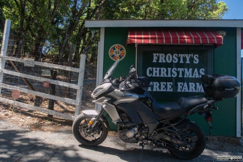 Chiaramente non e' questa la stagione migliore per visitare Frosty's Christams Trees, una vendita di alberi di Natale.