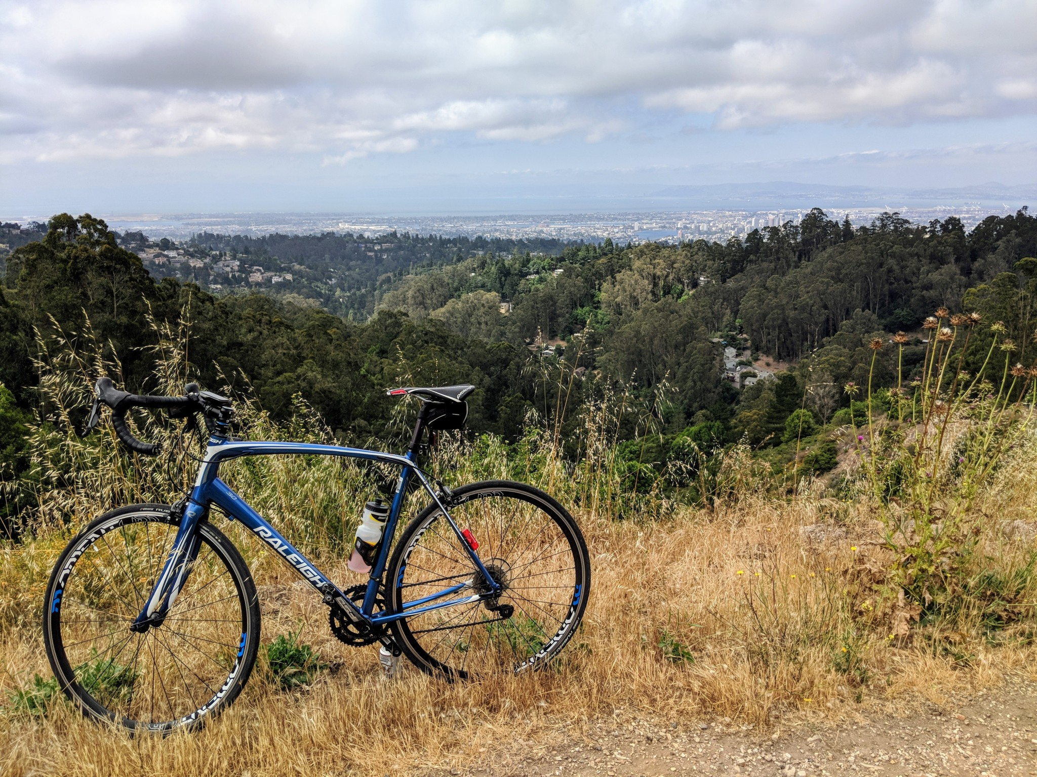 Sosta di dovere lungo il Grizzly peak Boulevard per ammirare la splendida vista sulla baia di San Francisco