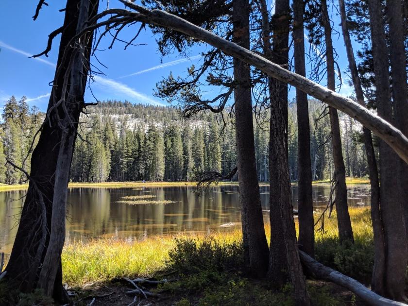 Il piccolo ma bellissimo Siesta lake sul lato destro della strada che va da Yosemite verso il Tioga Pass