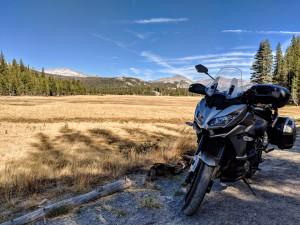 Una delle praterie che si incontrano scendendo dal Tioga Pass verso Mono Lake