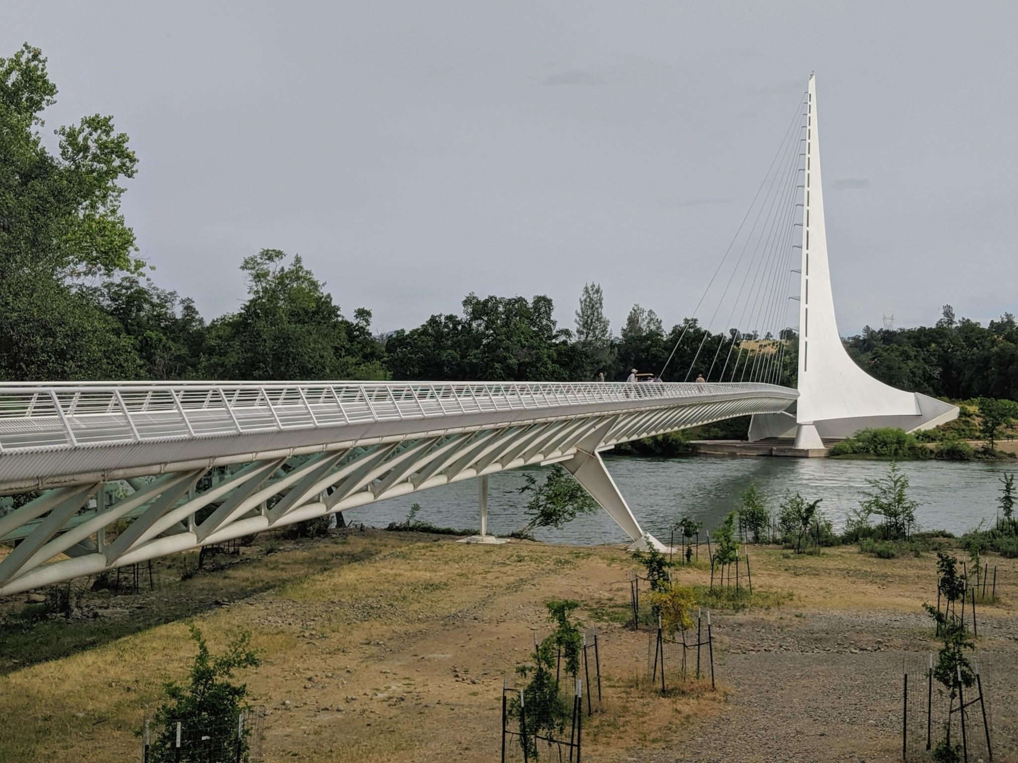 reve visita al Sundial Bridge (Ponte ciclo-pedonale Meridiana) sul fiume Sacramento presso il Turtle Park a Reddings, CA.  Il ponte è stato progettato dall'architetto spagnolo Santiago Calatrava.
