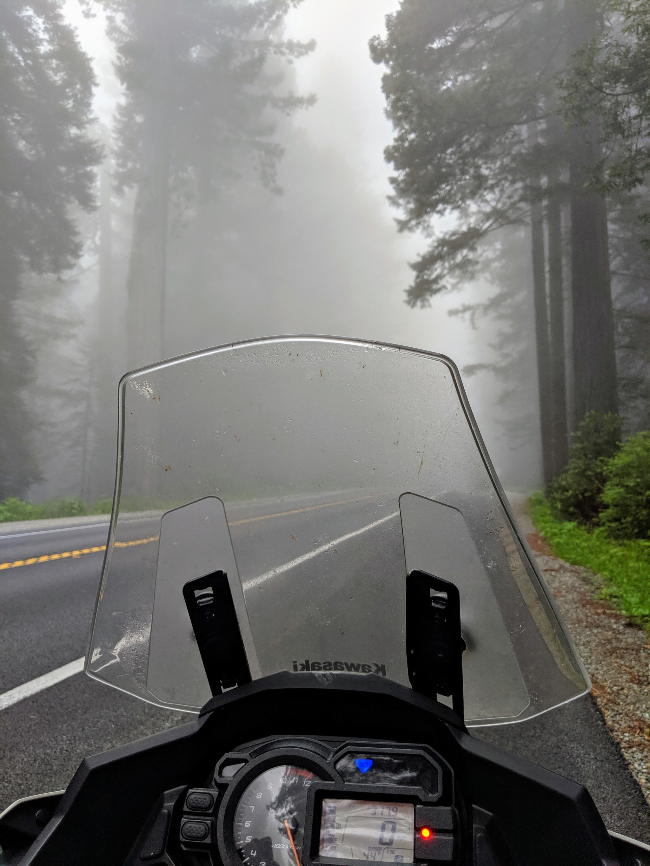 Non è facile guidare nelle nebbie della Highway 101 quando la temperatura scende sotto i 6 gradi Celsius (44 gradi Fahrenheit) come si può leggere sul cruscotto della Kawasaki Versys.