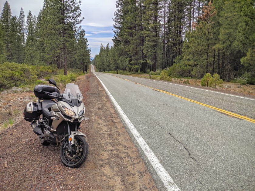 Crossing long stretches of forest along the Route 89, also called Volcanic Legacy Scenic Byway.