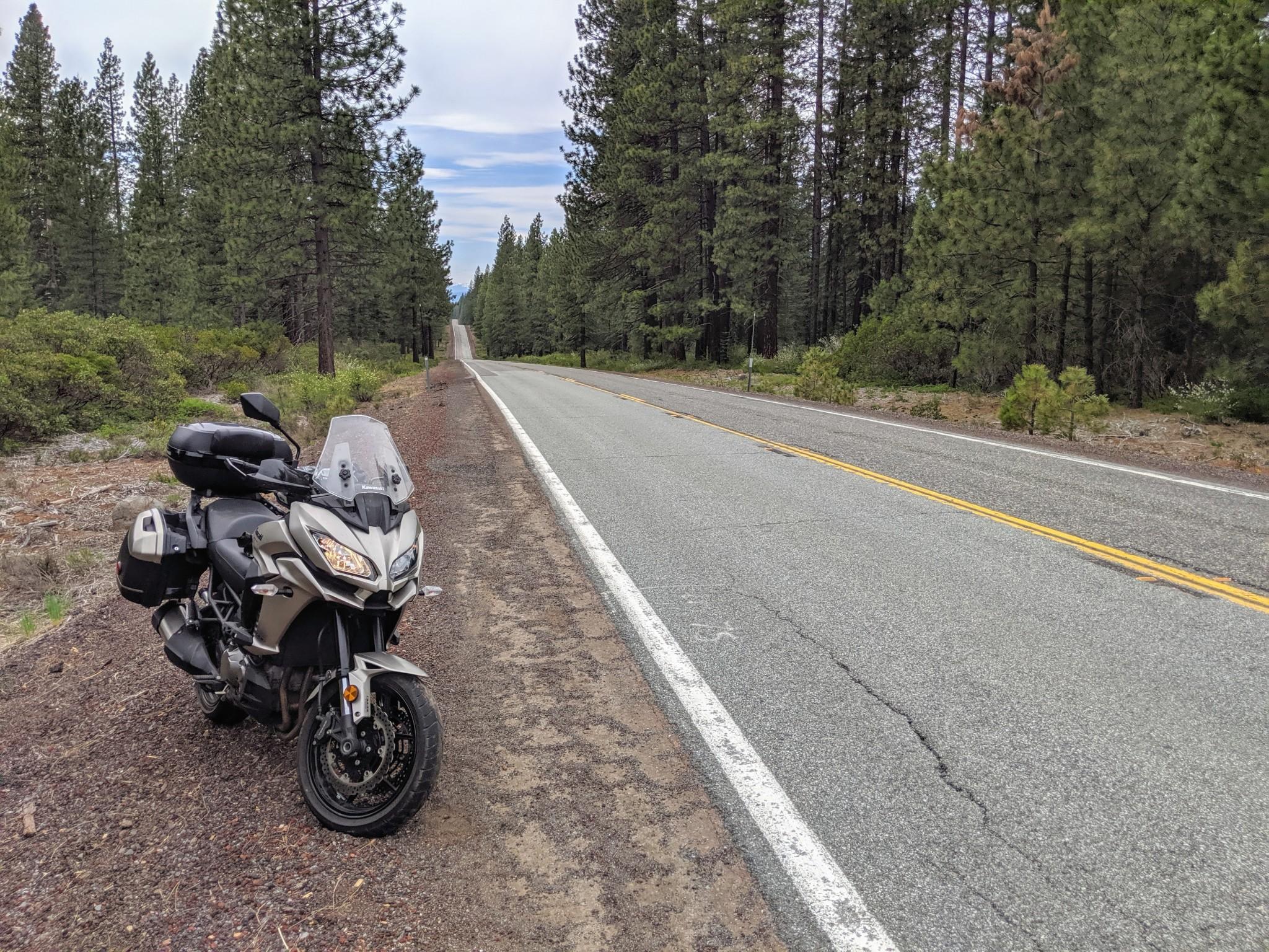 La Route 89 taglia una immensa foresta di abeti e sequoie con lunghissimi rettilinei in cui si susseguono una serie di su e giù. Questa strada viene anche chiamata Volcanic Legacy Scenic Byway. Molto bella da percorrere con la Kawasaki Versys 1000.