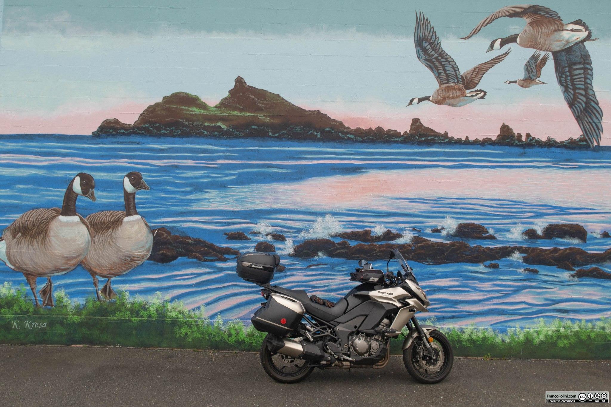 Ovviamente non poteva mancare una foto della mia Kawasaki Versys davanti a un murale. Questo murale dedicato alle oche canadesi si trova a Crescent City, CA