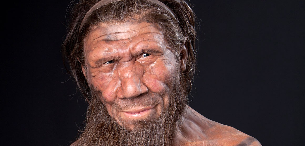 Modern Reconstruction of a Neanderthal