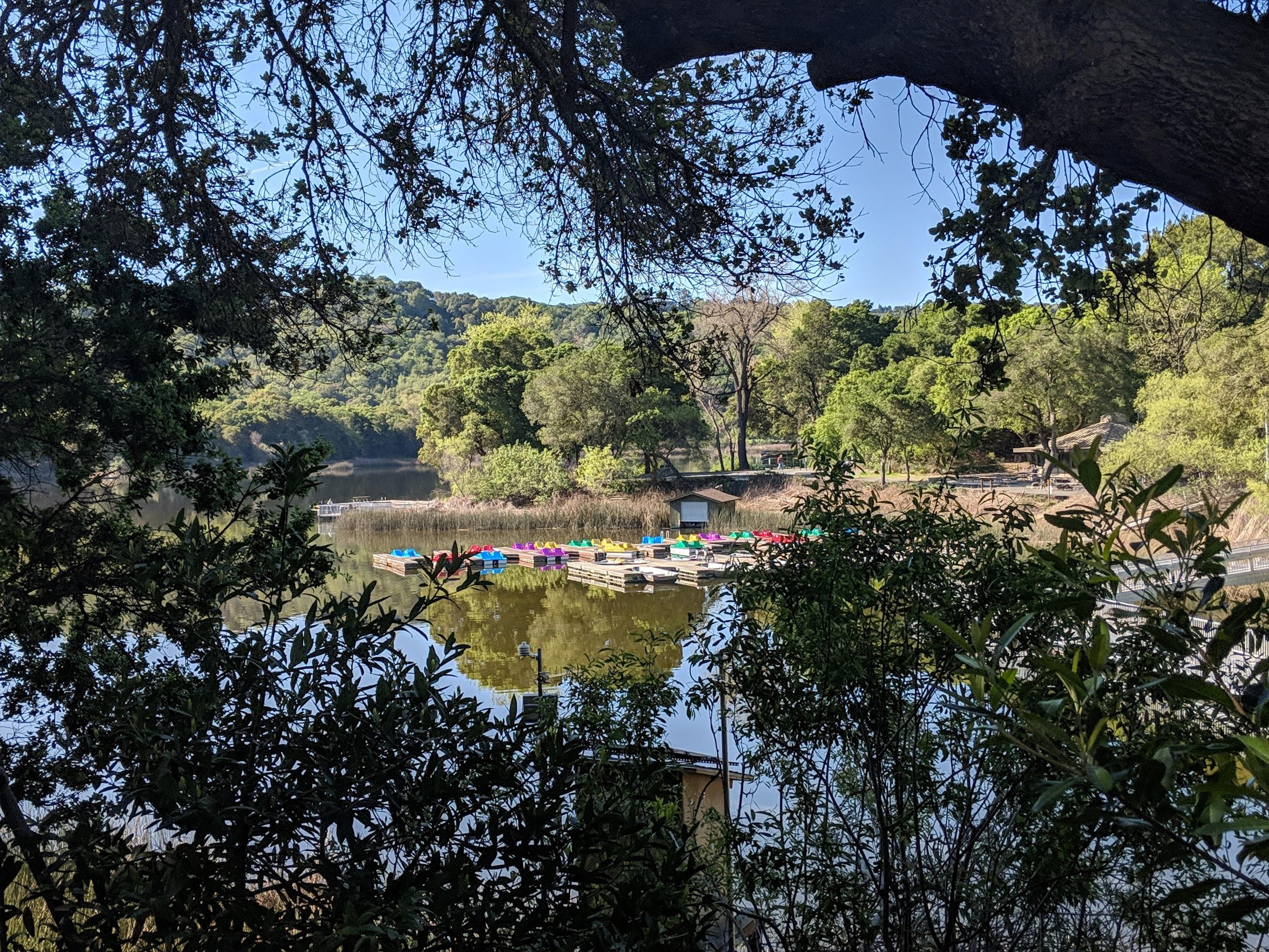 Oltre le colline di Oakland e Berkeley si trovano alcune piccole cittadine comm Lafayette. Non lontano dal centro di lafayette il laghetto Lafayette Reservoir offre un bel loop di 4.6 km, tutti all'ombra, perfetto per le giornate calde.