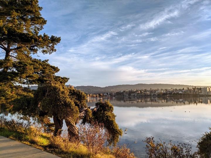 Lake Merritt a Oakland. L'intero loop attorno al lago misura 5 km ed è percorribile lungo un tracciato di uso esclusivo per runner e camminatori.