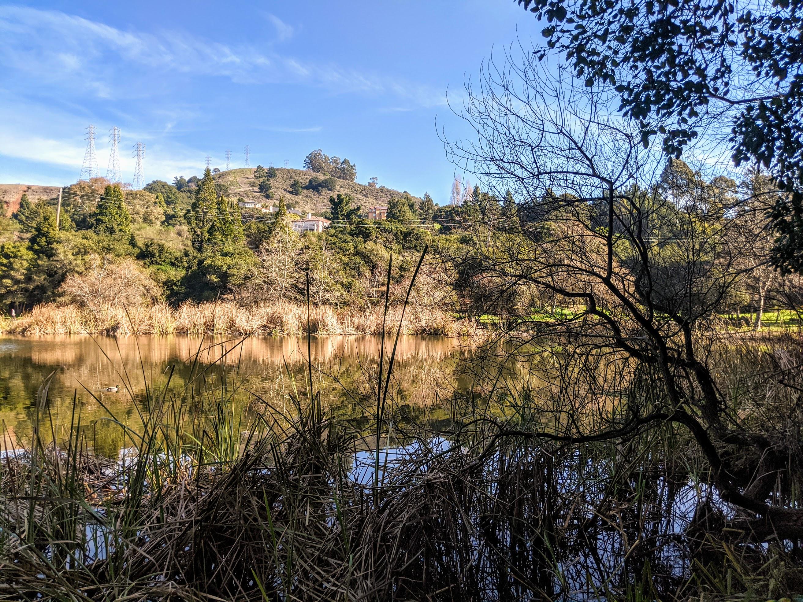 Altra immagine di Temescal Lake sulle colline di Oakland.