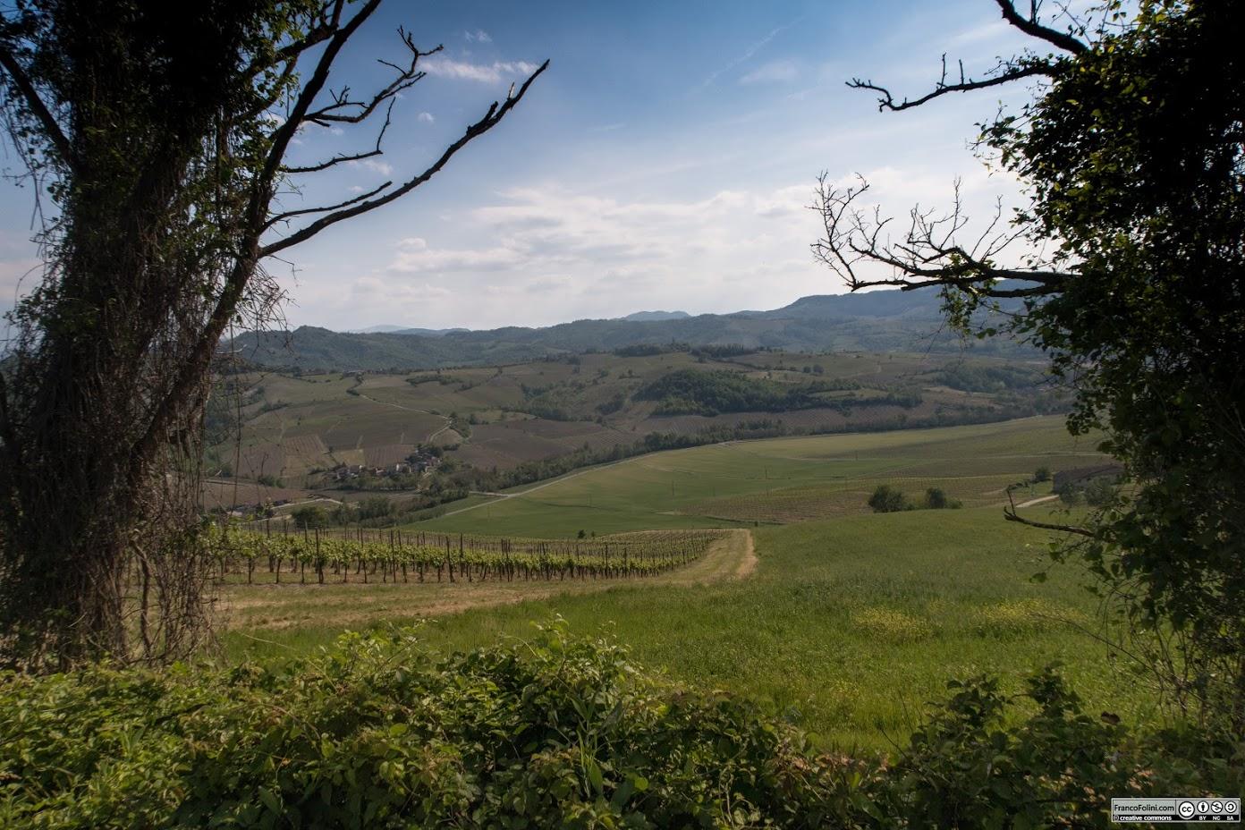 #IoCorroQui: Correre nell'Oltrepo Pavese